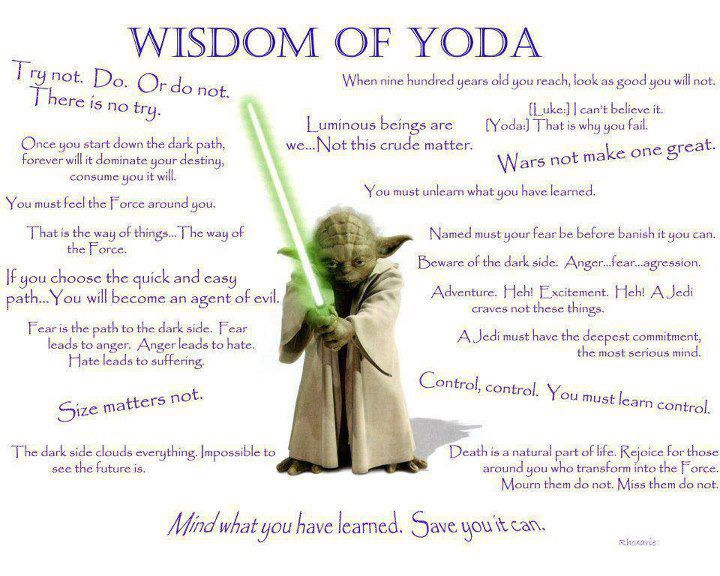 Lessons From Yoda: Fear is the path to the dark side....