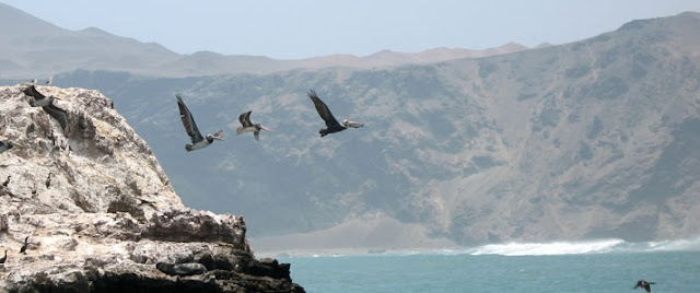 www.viajesyturismo.com.co 712 x 298