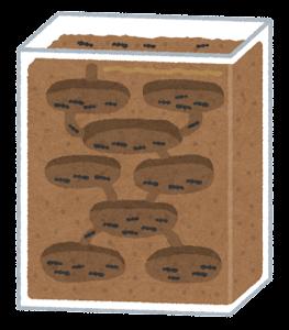 蟻の飼育ケースのイラスト(土)