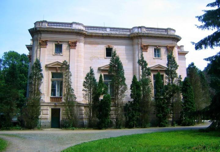 Castelul Mocsonyi Teleki, Capalnas