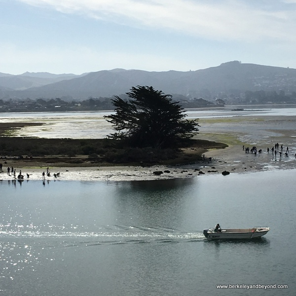 Marina Peninsula Loop Trail on Estuary in Morro Bay State Park in Morro Bay, California