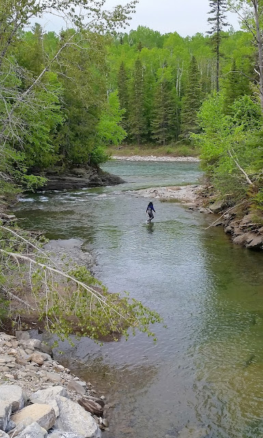 Hyun exploring a tributary of the St. Jean river, Gaspé
