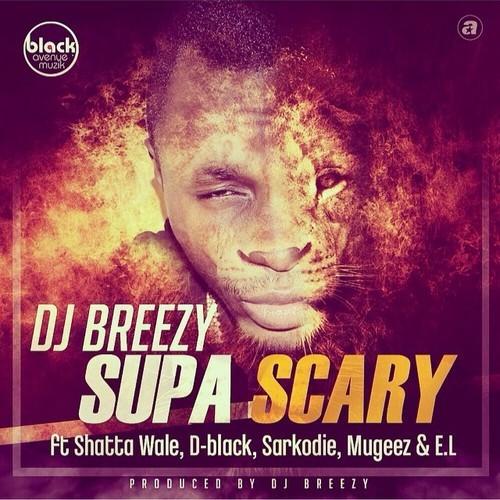 Everyday is Music: DJ BREEZY ft  SARKODIE, D BLACK, SHATTA WALE