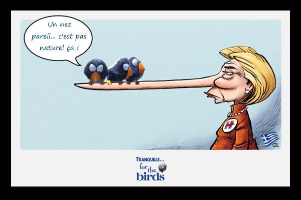 """Résultat de recherche d'images pour """"14 novembre humour"""""""