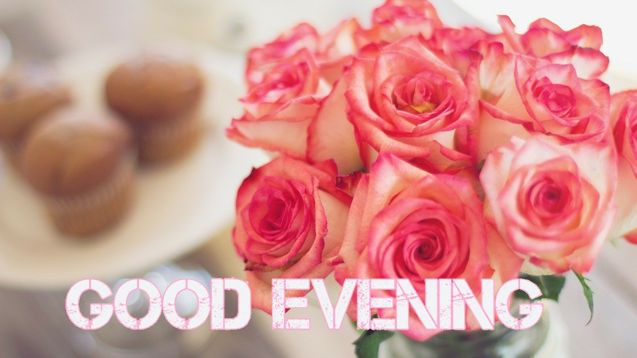 Bunch of pink roses with good evening hd image for whatsapp