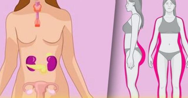 10 советов для женщин, которые помогут улучшить гормональный баланс