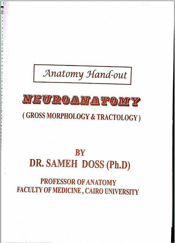 Anatomy SD Neuroanatomy Sameh Doss.pdf - 4medicals