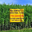 All Things Agriculture: Hemp: What Are We Waiting For?