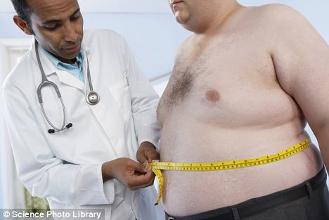 fat, obesity, overweight