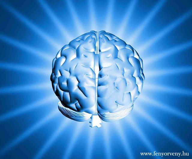Az internet átalakítja az agyat