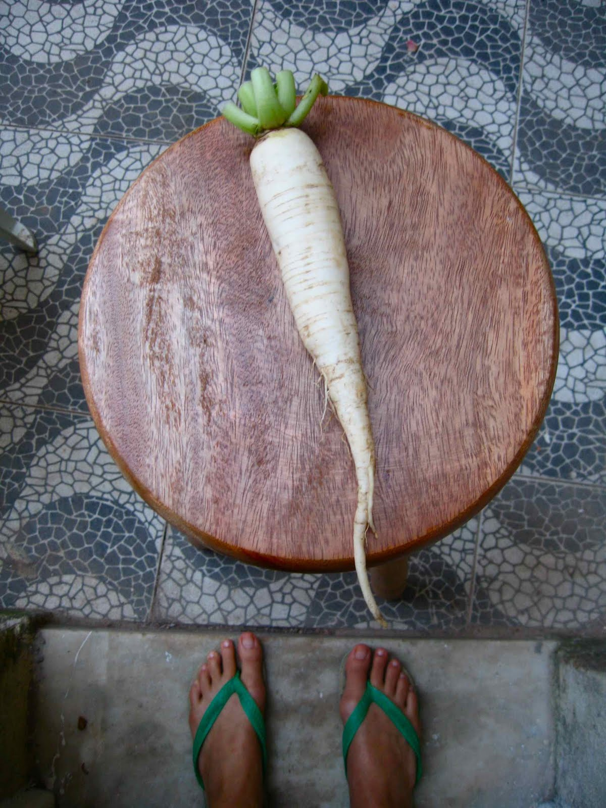 Weird White Vegetables 9