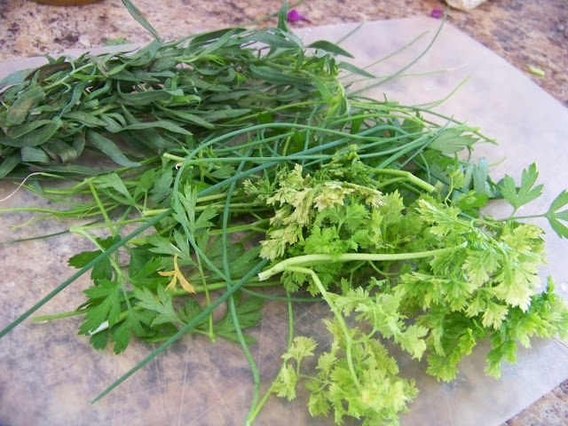 Herbs - Tarragon, Chives, Parsley and Chervil