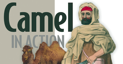 Next phase with the Camel in Action 2nd edition book