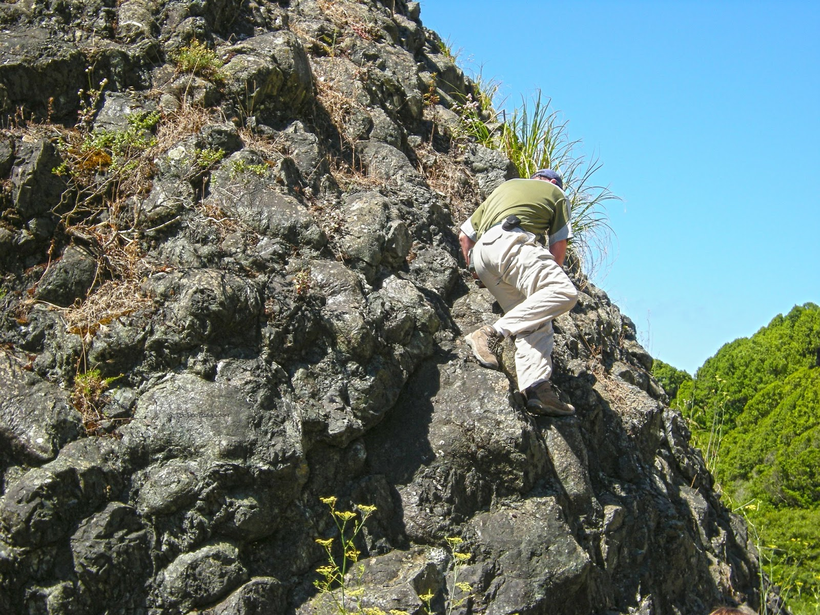 pillow lava in accreted island in melange