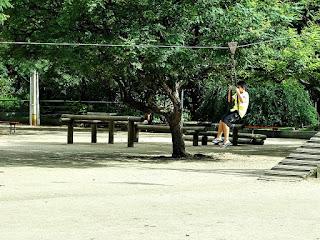 Tirolesa no Parque Moinhos de Vento