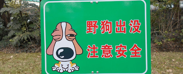 野犬出没 注意安全の看板
