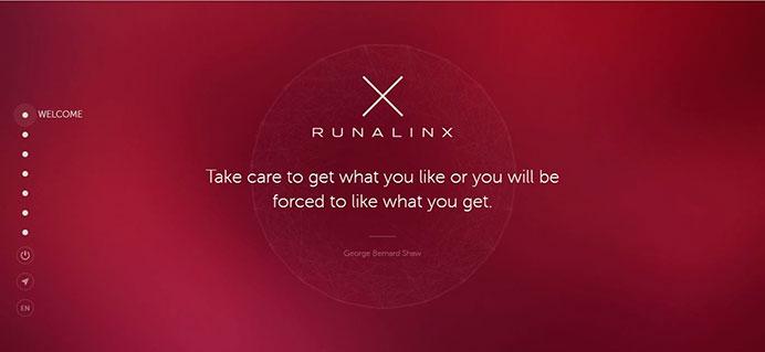 Runalinx отзыв и обзор инвестиционного проекта