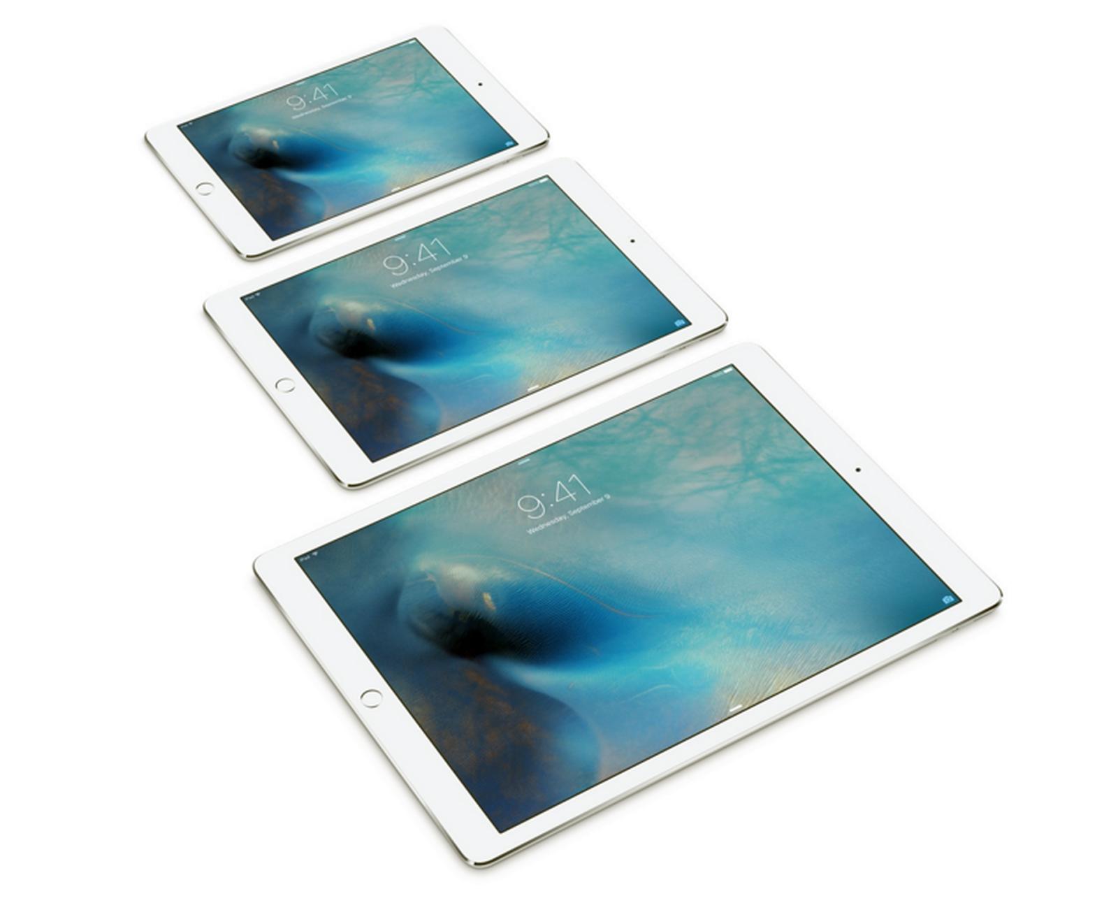 How to Customize iPad Pro Mini