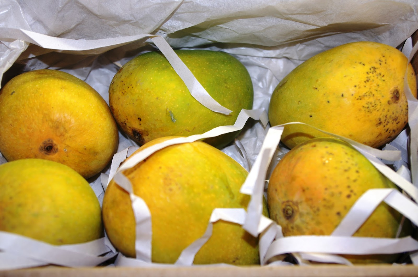 Alphonso Mango Alphonso Mangoes Are Here | Wine Spice