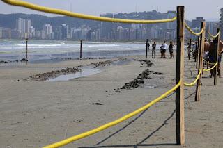 Destroços de um navio misterioso são encontrados em praia do litoral de SP