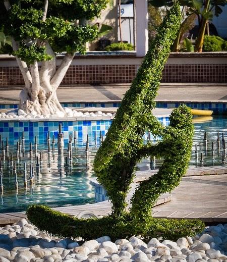 windsurfer topiary