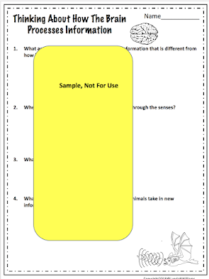 science worksheet 4th grade