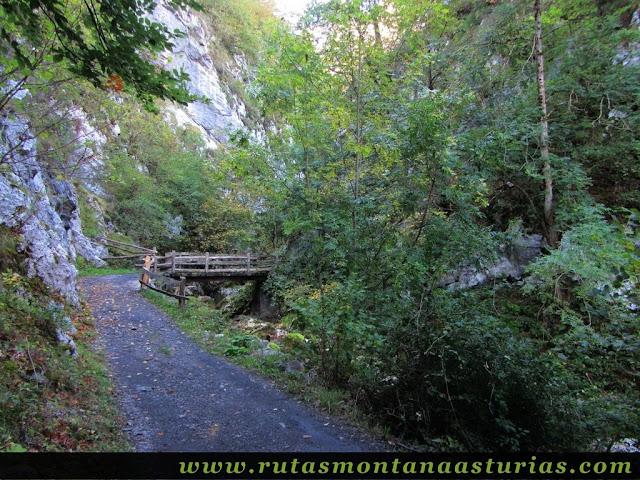 Ruta de los Arrudos y Corteguerón: Puente sobre el arroyo