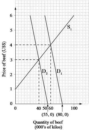 TN Economics: Tackling the IB Economics Examination