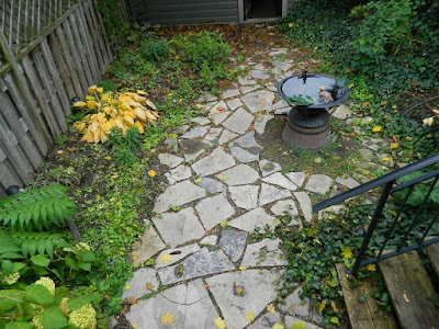 A Fall Garden Cleanup in Leslieville