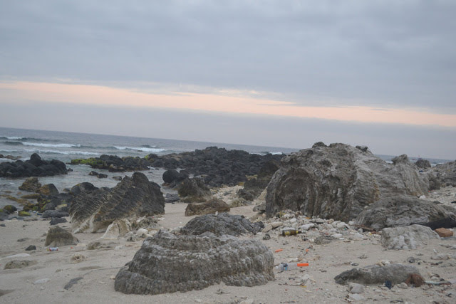 Nghĩa địa san hô hóa thạch rộng gần 20.000 m2 trải dài theo dọc tuyến bờ biển phía Đông đảo Lý Sơn