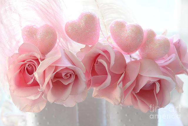 rose day rose
