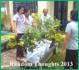 Variety of fruit trees inspected by the teachers