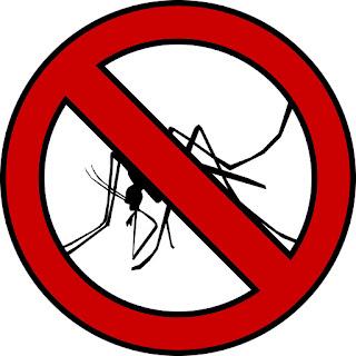 Rimedi Contro le Zanzare: Prevenire e Combattere