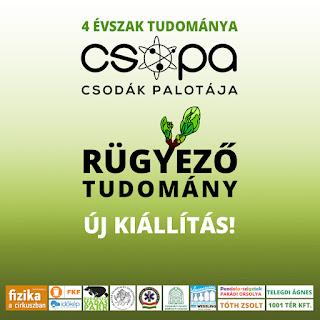 http://www.csopa.hu/hirek/item/268-rugyezo-tudomany-uj-idoszakos-kiallitas-a-csopaban