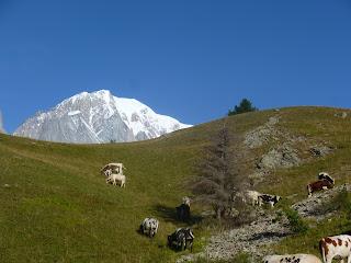 Refugio Bertone Tour del Mont Blanc