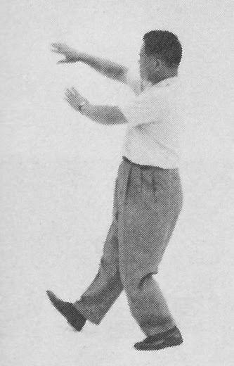 Tai Chi Chuan (Square Form) 78. The Seven Stars Style