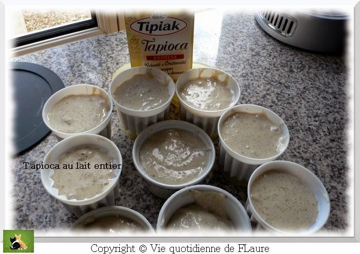 Vie quotidienne de FLaure: Tapioca au lait entier, coulis de mangue