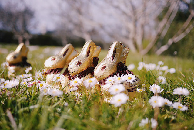 lapin Lindt Pâques
