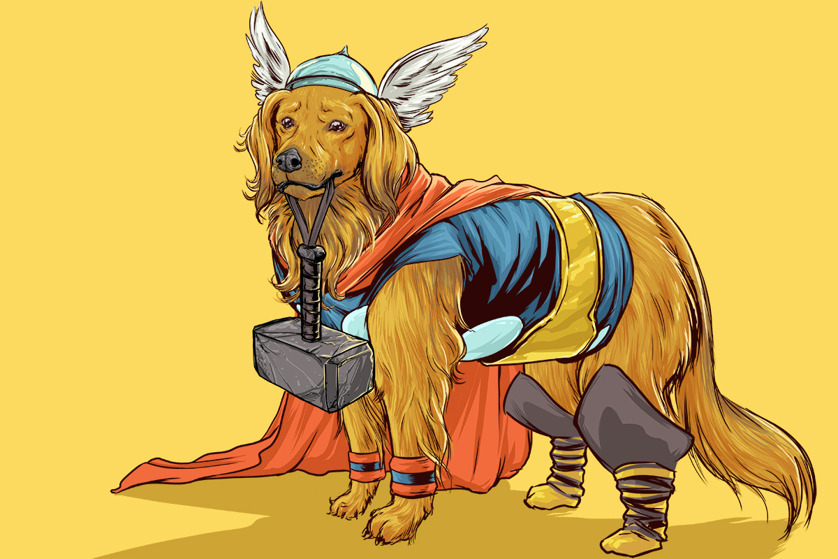 10-Thor-Josh-Lynch-Illustrations-of-Dogs-with-Marvel-Comic-Alter-Egos-www-designstack-co