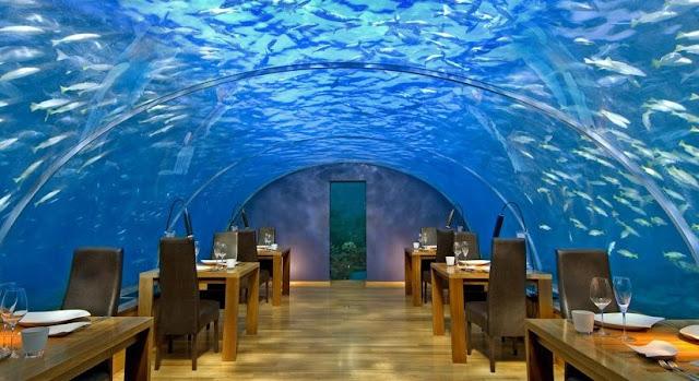 http://www.katasaya.net/2016/05/enam-restoran-paling-unik-di-dunia.html