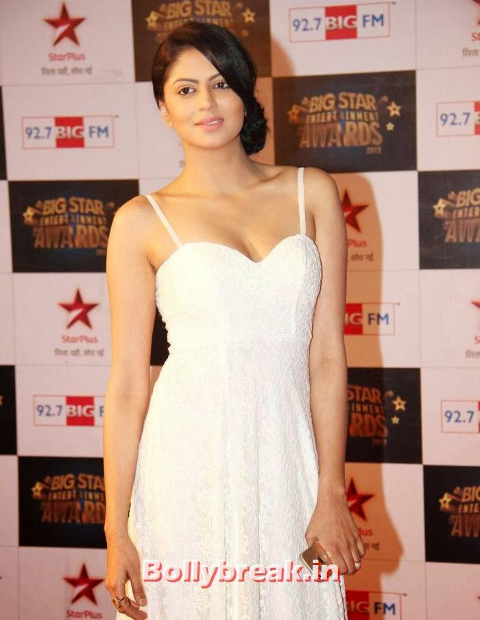 Kavita Kaushik, Tv babes Sizzle on Big Star Entertainment Awards 2013 Red Carpet