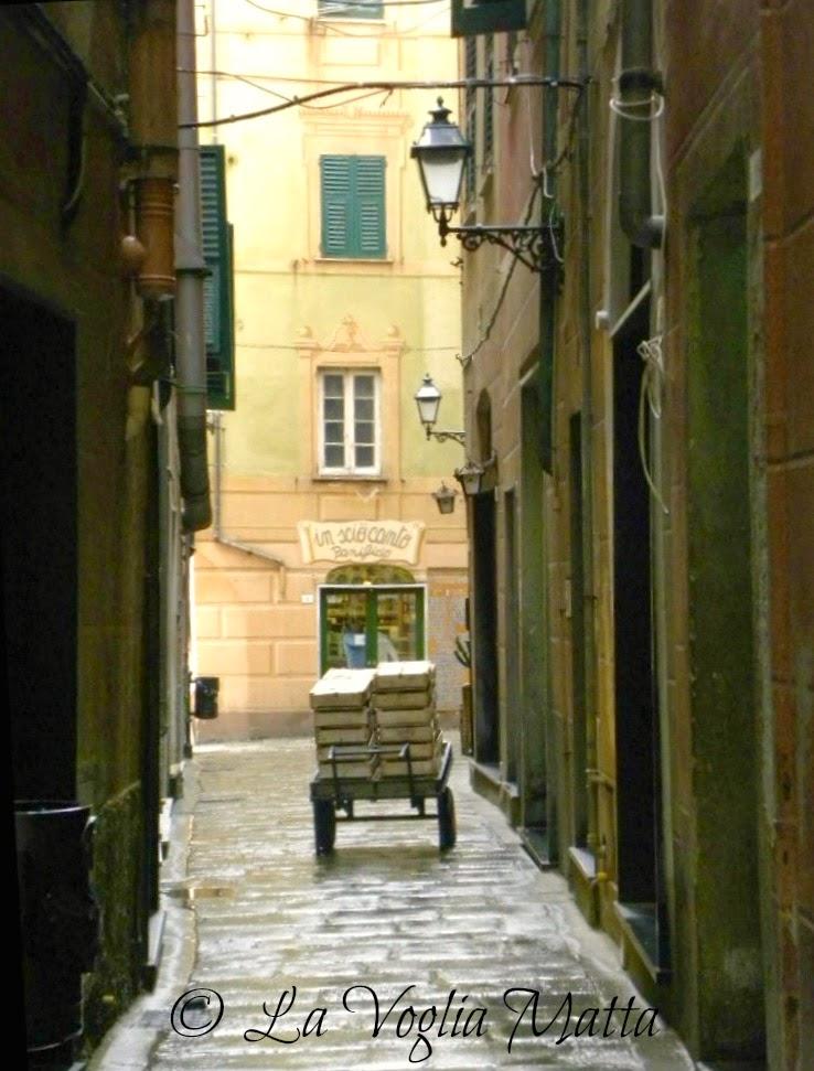 Liguria vicolo di Camogli
