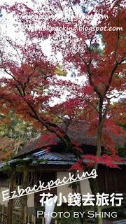 栗林公園賞紅葉