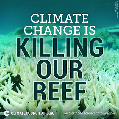 Climate Change Is Killing Our Reef / climatecouncil.org.au