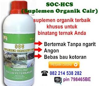 SOC - HCS salah satu Bahan Bahan Untuk Membuat Pakan Fermentasi Ternak Sapi