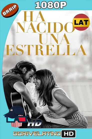 Nace Una Estrella (2018) BRRip 1080p Latino-Ingles mkv