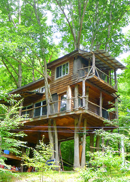 Cool treehouse along the Delaware River