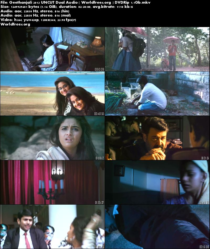 Geethanjali 2013 DVDRip 1.2Gb Hindi 720p Dual Audio