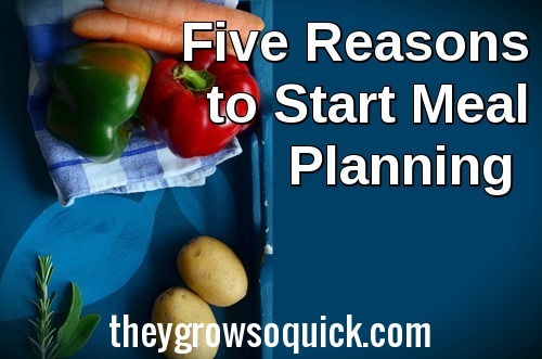 Five reasons you should start meal planning