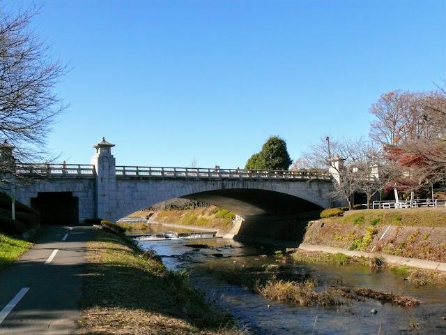 浅川 陵南公園 南浅川橋